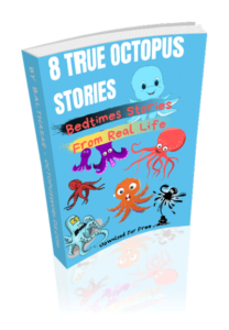 Download Ebook octopus stories from real life